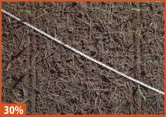 30% Soybean Residue