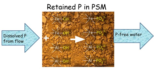 Process of P retention is PSM