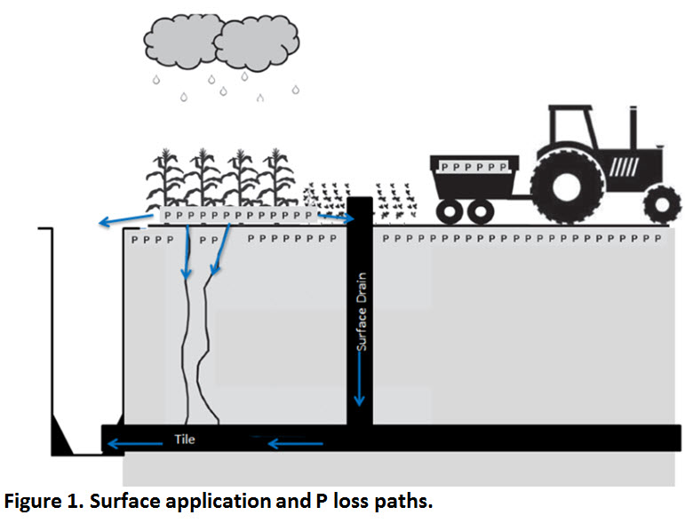 Illustration of surface application loss paths